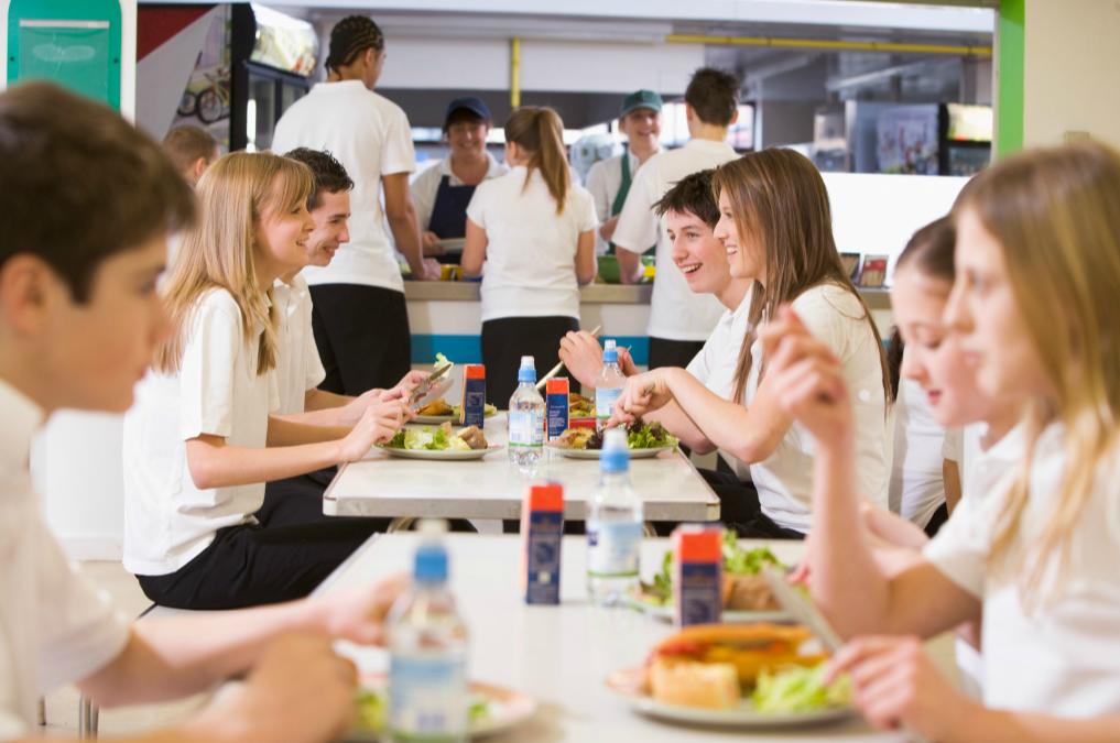 School Teenage nutrition