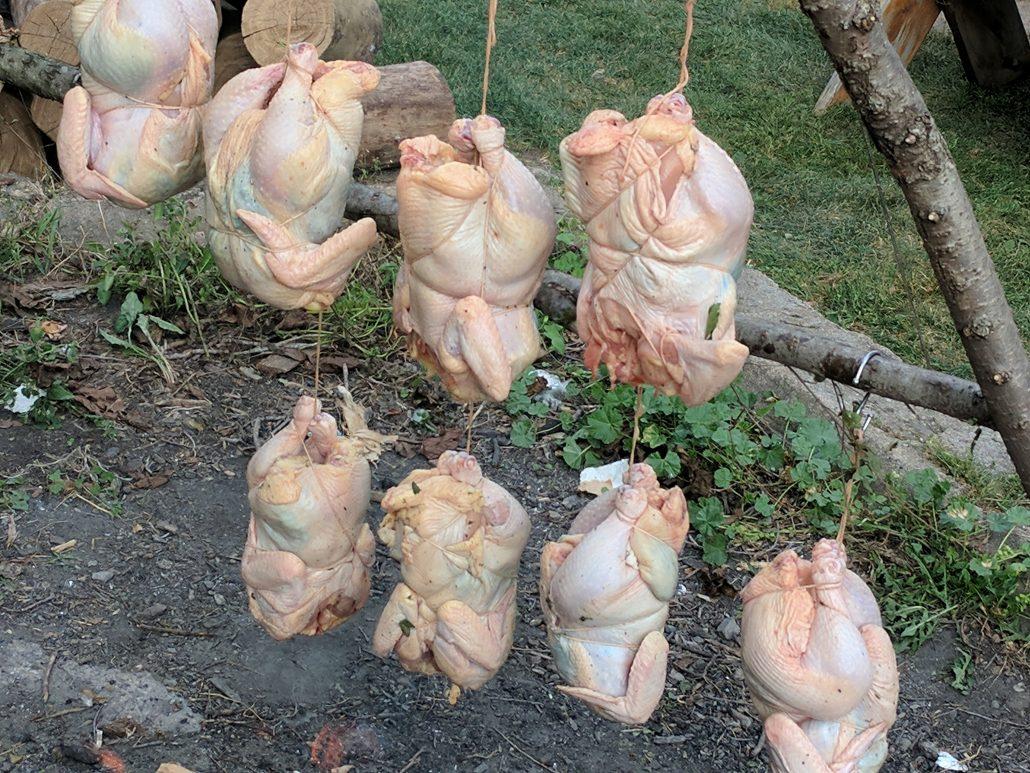 Beginning cooking chicken at Farm Dinner
